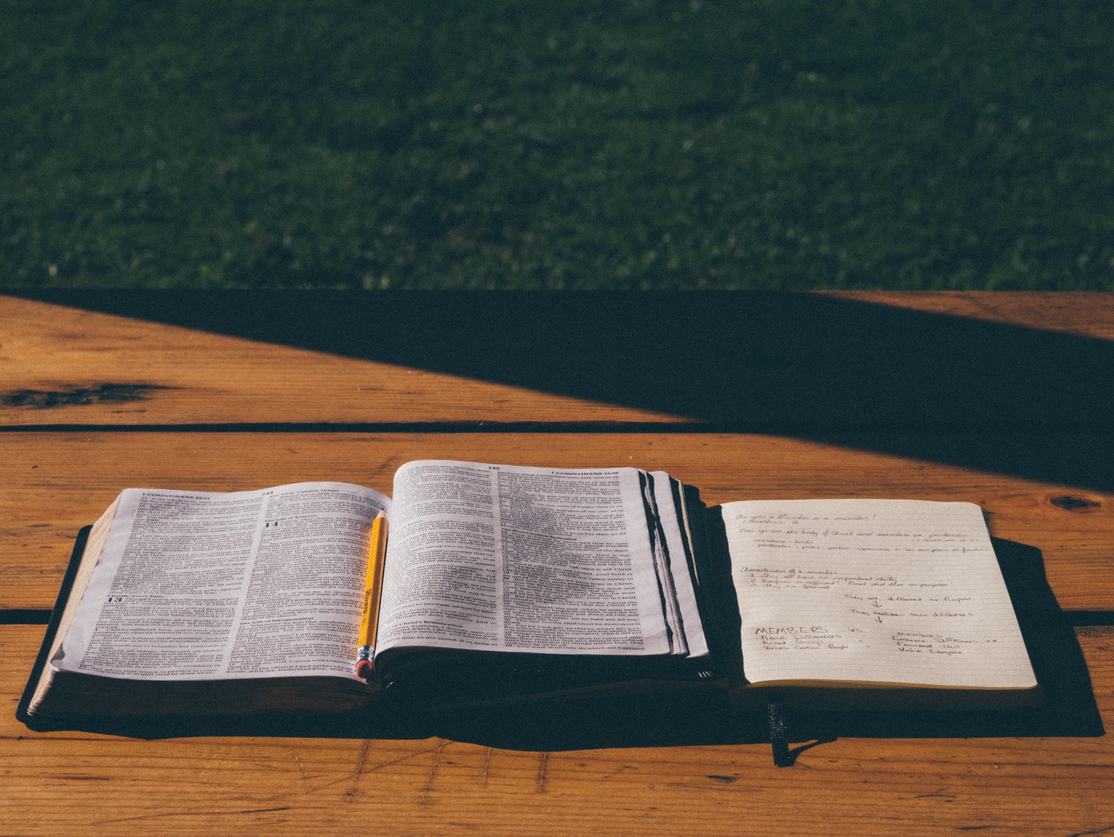 pazienza di giobbe sermone